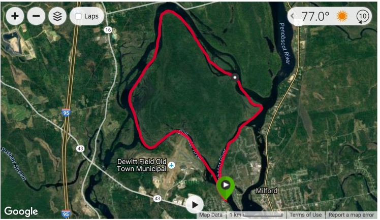 orson-island-training-loop